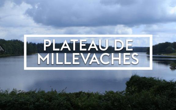 Plateau des Mille Vaches